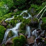 蔵王の雪解け水が、圧倒的な量で噴水のように流れ出る、象ヶ沢噴水