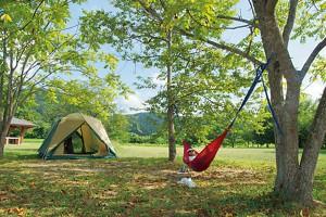 エコキャンプ