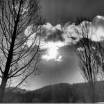 写真コンテスト入賞作品 作品名「凍てつく寒さ」