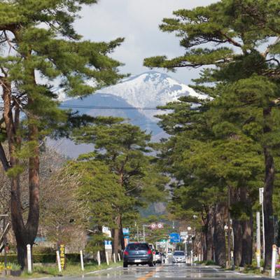 D-3-笹谷街道_2